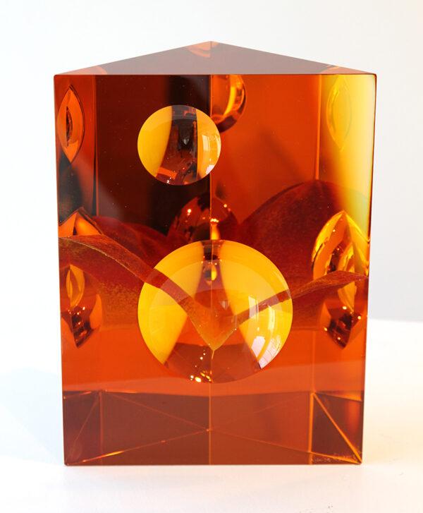 AJ Bird amber optical 2 lenses 25x18,5x8,5 LR IMG_9107